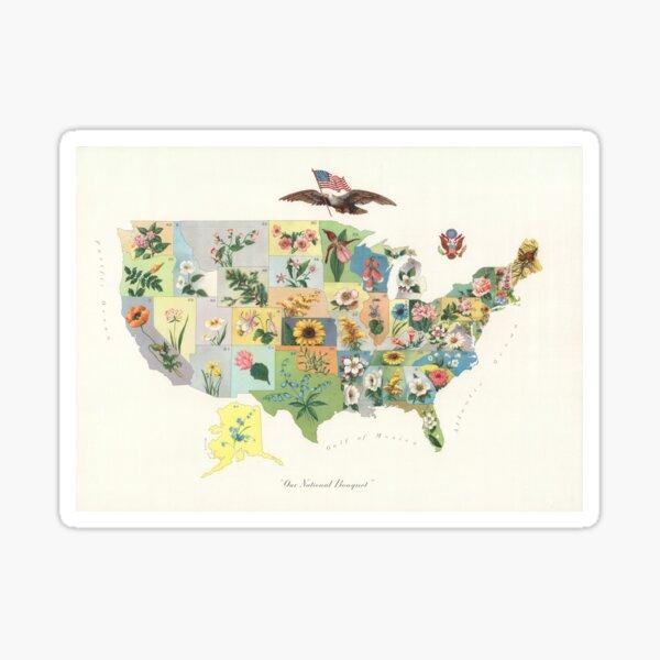 Vintage US State Flower Map (1911) Sticker