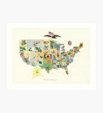 Vintage US State Flower Map (1911) Art Print