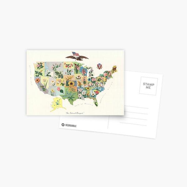 Vintage US State Flower Map (1911) Postcard
