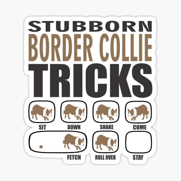 Border Collie obstinado regalo | Border Collie Owner Gift | Border Collie Dog Gift Pegatina
