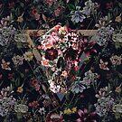New Skull by Ali Gulec