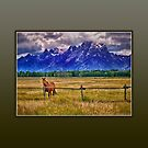Horse  and the Mountains by Kathy Weaver