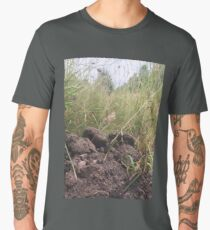 Asphodels and grass Men's Premium T-Shirt