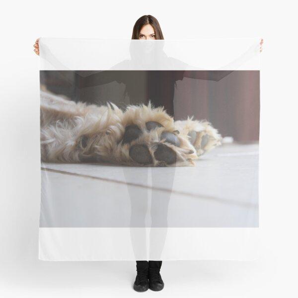 Nouveau Chien Amant imprimé foulard wrap Saucisse Chien Westie Terrier Grand cadeau de Noël