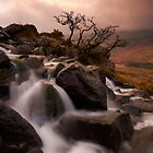 River Dance by Jeanie