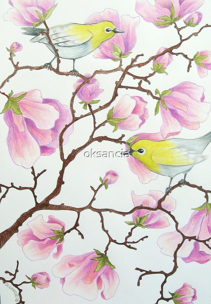 White-eyes on magnolia tree by oksancia