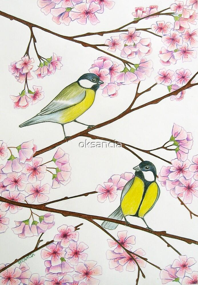 Tits on sakura tree by oksancia