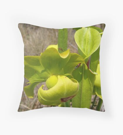 Pitcher Plant Throw Pillow
