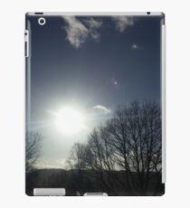 Windermere iPad Case/Skin
