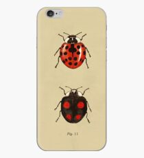 Coccinellidae entomology studies fig. 11 iPhone Case