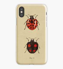 Coccinellidae entomology studies fig. 11 iPhone Case/Skin