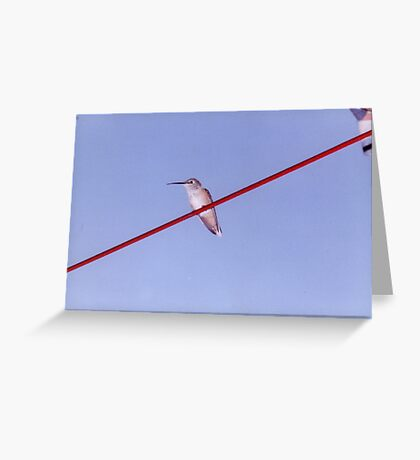 Bird On A Wire... Greeting Card