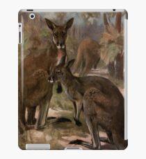Vintage Kangaroo Painting (1909)  iPad Case/Skin