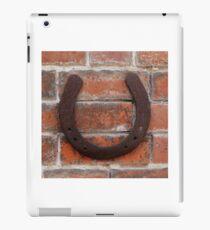 horse shoes  iPad Case/Skin