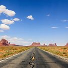 Monument Valley Road by Hannah Welbourn