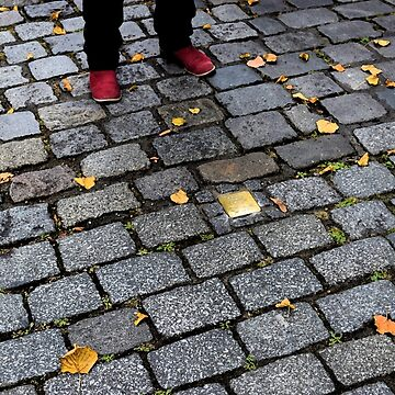 Red Shoes and Stumbling Stone by MelissaB