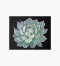 Succulent plant Art Board