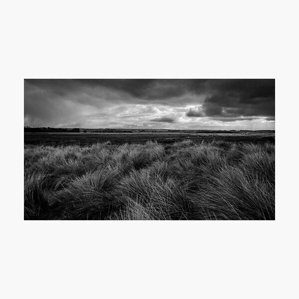 Across the Dunes, Brancaster Photographic Print