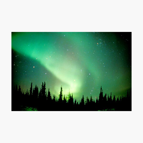 Aurora Borealis, Churchill, Manitoba Photographic Print