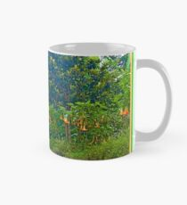 Back Road with Trumpet Flowers Mug