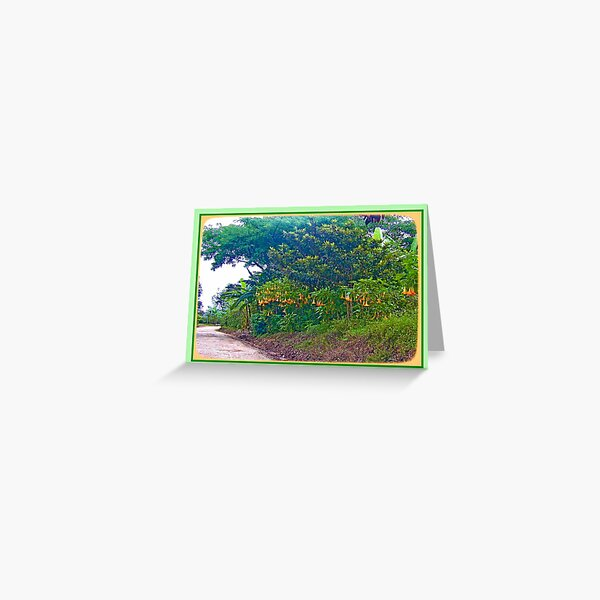 Back Road with Trumpet Flowers Greeting Card