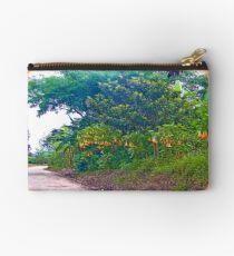 Back Road with Trumpet Flowers Studio Pouch