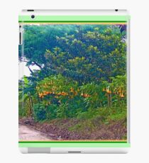 Back Road with Trumpet Flowers iPad Case/Skin