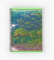 Back Road with Trumpet Flowers Spiral Notebook