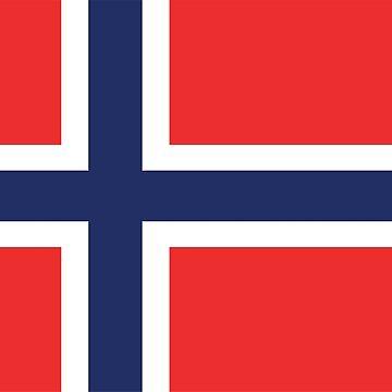 Norwegian Flag by designseventy