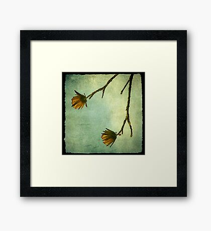Tree Flowers Framed Print