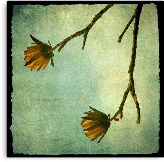 Tree Flowers by Kitsmumma