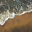 The Golden Coast by Rachael Burriss
