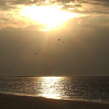 Golden morning by Lazulyte