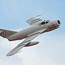 Mikoyan-Gurevich MiG-17 Fresco by Rick Nicholas