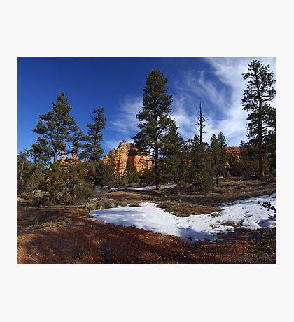 Red Canyon, Utah Photographic Print