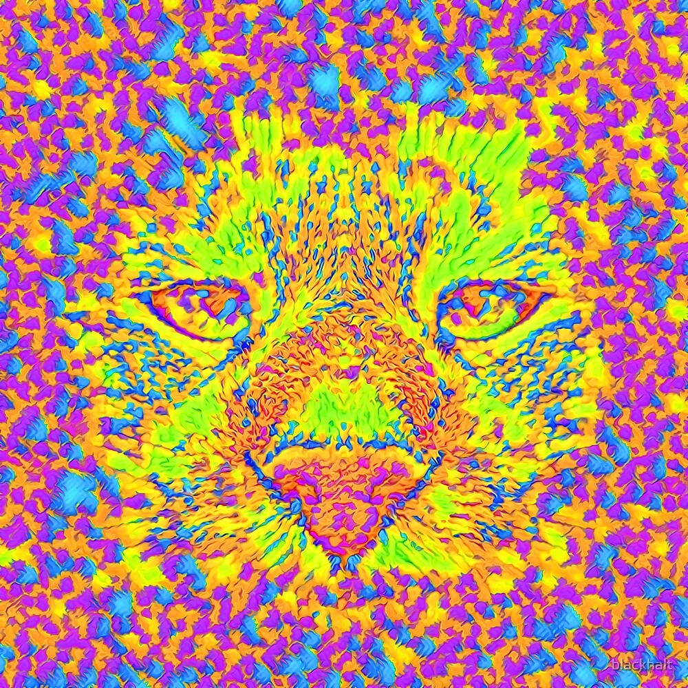 Abstract Cat Nose by blackhalt