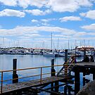 Hilary Boat harbour  by HG. QualityPhotography