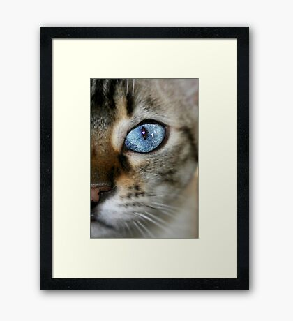 pretty blue Framed Print