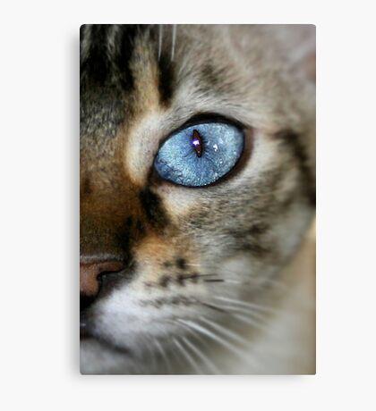 pretty blue Canvas Print