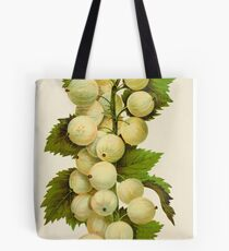 Canadian Horticulturalist 1888-96 - Downing Gooseberries Tote Bag