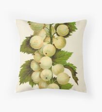 Canadian Horticulturalist 1888-96 - Downing Gooseberries Throw Pillow
