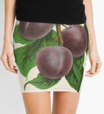 Canadian Horticulturalist 1888-96 - Fellemburg Plums Mini Skirt