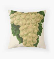 Canadian Horticulturalist 1888-96 - Green Mountain Grapes Throw Pillow