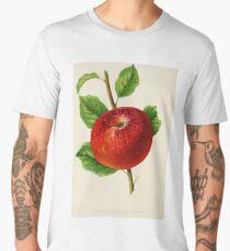 Canadian Horticulturalist 1888-96 - Hubbardston Nonsuch Apple Men's Premium T-Shirt