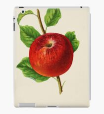 Canadian Horticulturalist 1888-96 - Hubbardston Nonsuch Apple iPad Case/Skin