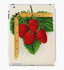 Canadian Horticulturalist 1888-96 - Parker Earle Strawberries iPad Case/Skin