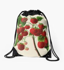 Canadian Horticulturalist 1888-96 - Raspberries Drawstring Bag
