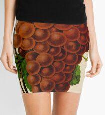 Canadian Horticulturalist 1888-96 - Vergennes Grapes Mini Skirt