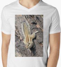 Indian palm squirrel 01 Men's V-Neck T-Shirt
