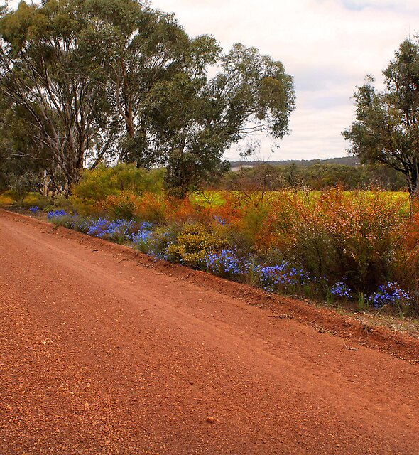 Roadside colour by georgieboy98